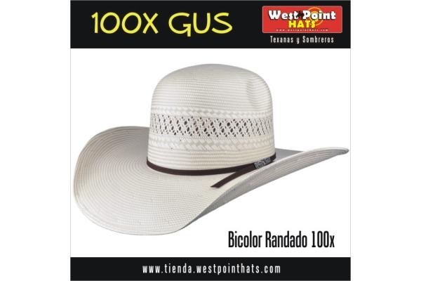 1fb825fa73761 Galeria de imagenes de Texanas y Sombreros WESTPOINT (WestPointHats)