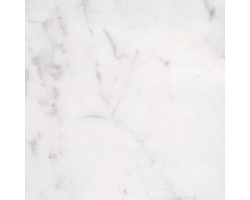 Expom rmol m rmoles en zapopan for Marmol blanco carrara