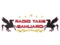 RADIO TAXIS SAHUARO