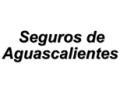 SEGUROS DE AGUASCALIENTES