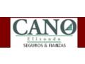 CANO ELIZONDO SEGUROS Y FIANZAS