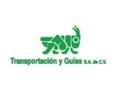 TRANSPORTACION Y GUIAS SA DE CV