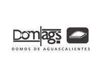 logo DOMOS DE AGUASCALIENTES